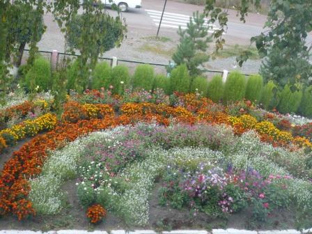 Цветы из атласной ленты своими руками