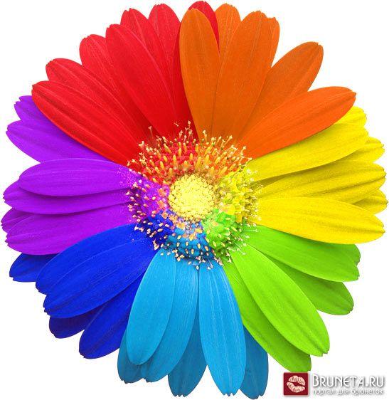 http://r-mbdou.narod.ru/images/semicv.jpg